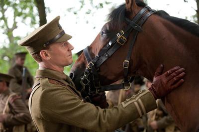 War_horse_tom