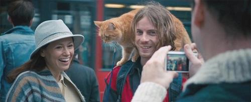 A_street_cat_named_bob_4